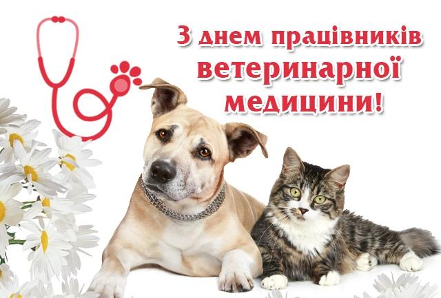 13-Den-pratsivnikiv-veterinarnoyi-meditsini-otkrytka
