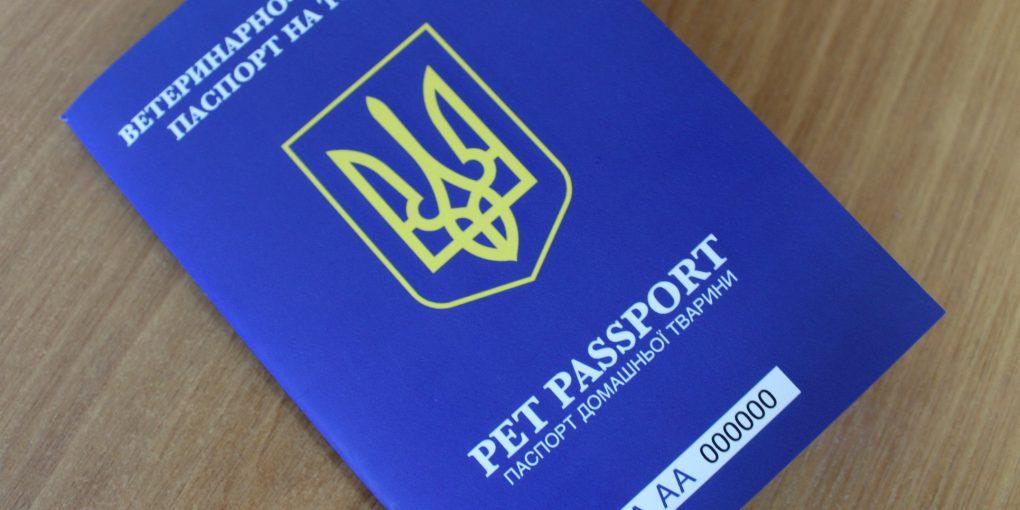 сан паспорт