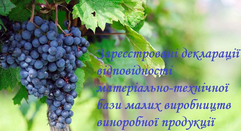 koli_saditi_vinograd123