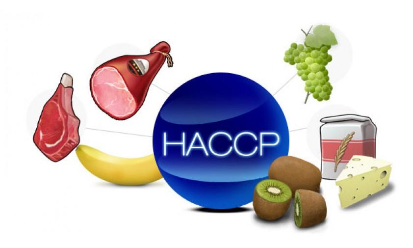 haccp-842x505
