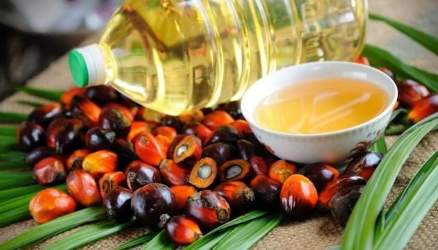 23-palmova-oliia